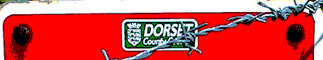 Dorset County Council: Representing the community?
